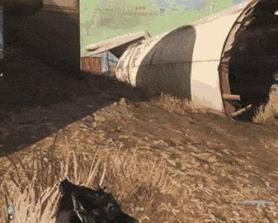 How To Get Reported 101 (aka 2 Bullets 1 Heli)