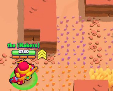 Purple Bushes?????? I checked the replay but that time, the bushes were just yellow.