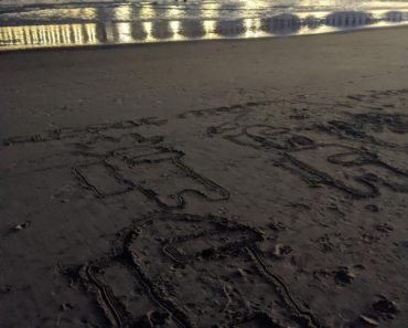 A sus sand drawing under Oceanside Pier...